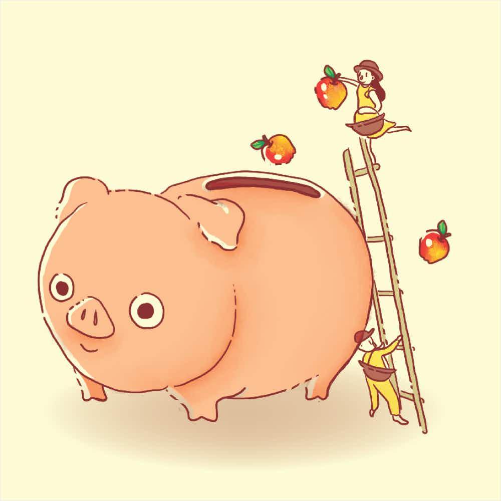 Final Pig illustration