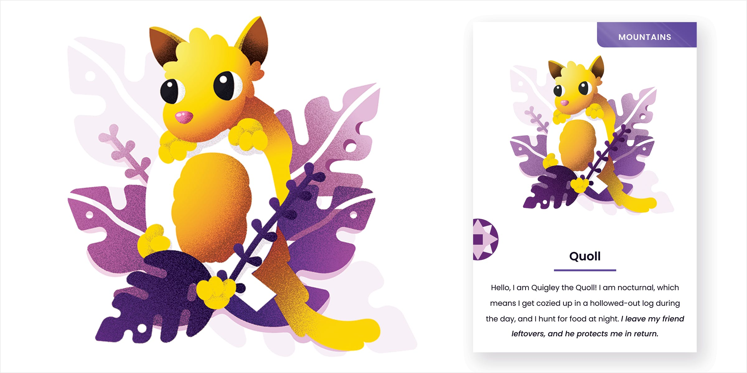 Mockup of letter Q quoll card. A quoll rests its head on the top of the Q while the rest of its body is wrapped between the letter. It is cradled in purple foliage.