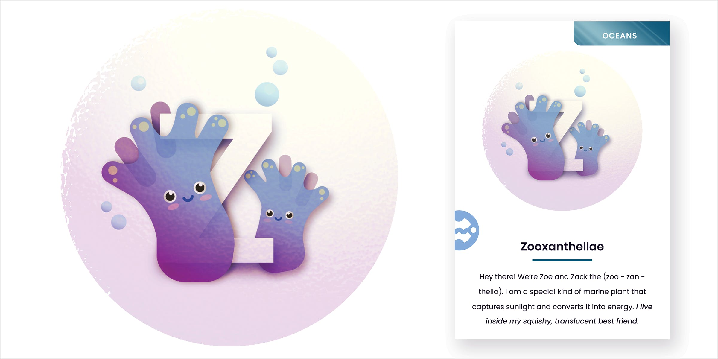 Mockup of letter Z zooxanthellae card. Two zooxanthellae are positioned on either side of the letter Z, entrapped in a giant floating bubble.
