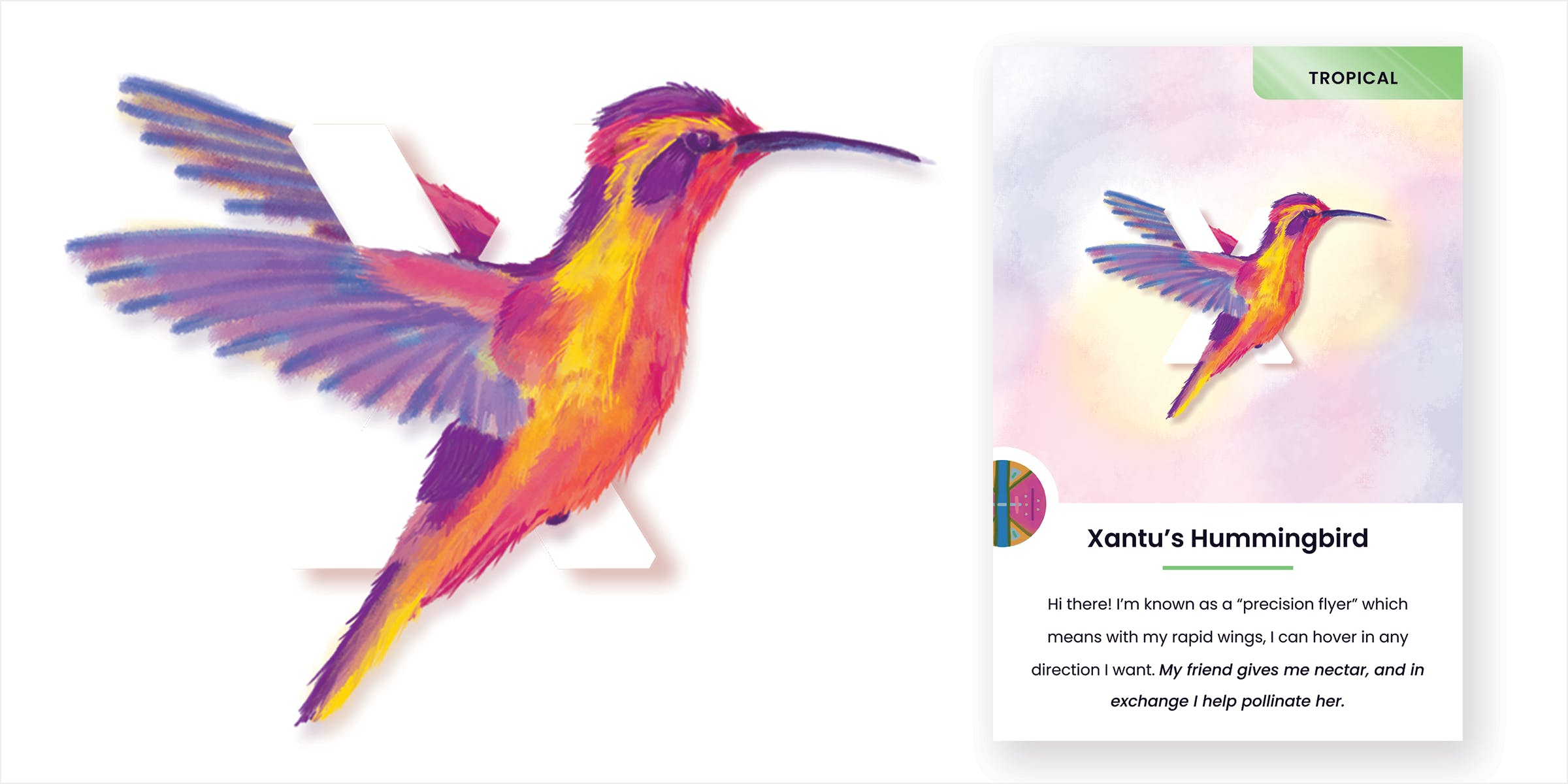 Mockup of letter X Xantu's hummingbird card. A large, pastel-colored bird is in mid-flight with its wings wrapped around the letter X.