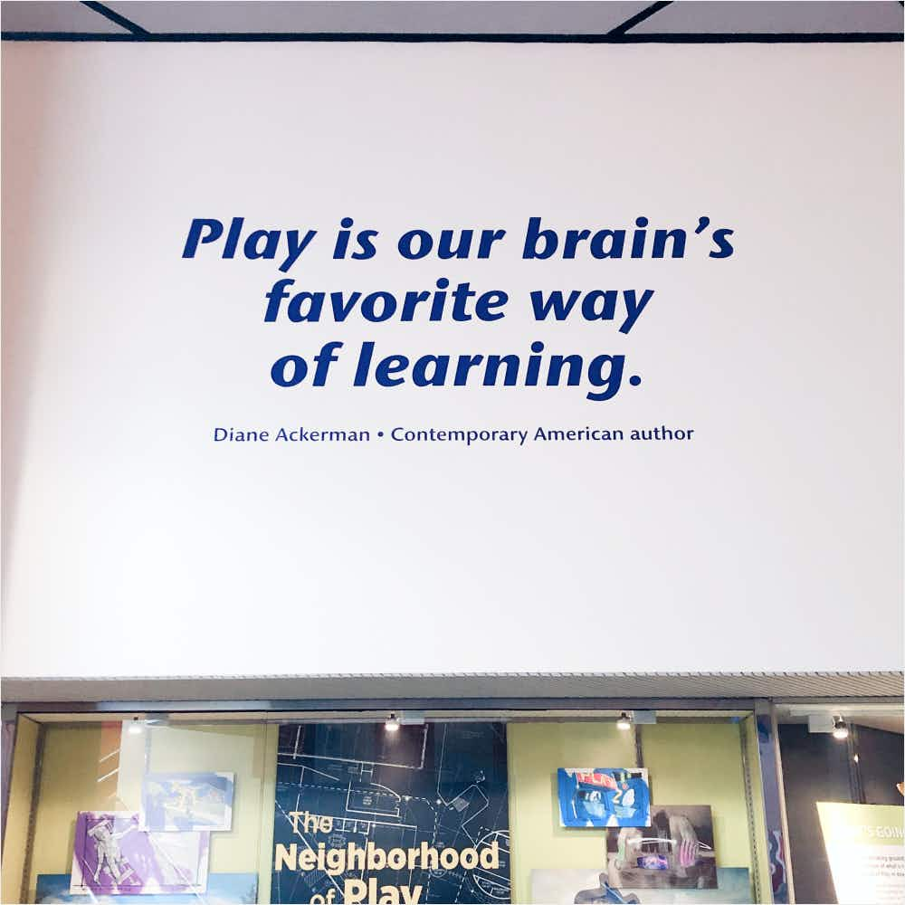Quote that says PLay is our brains favorite way of learning