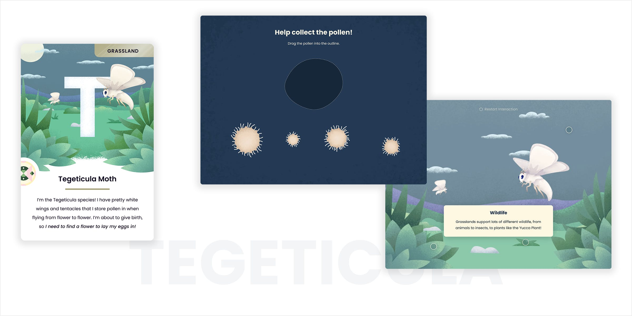 Tegeticula Moth card and interaction screens