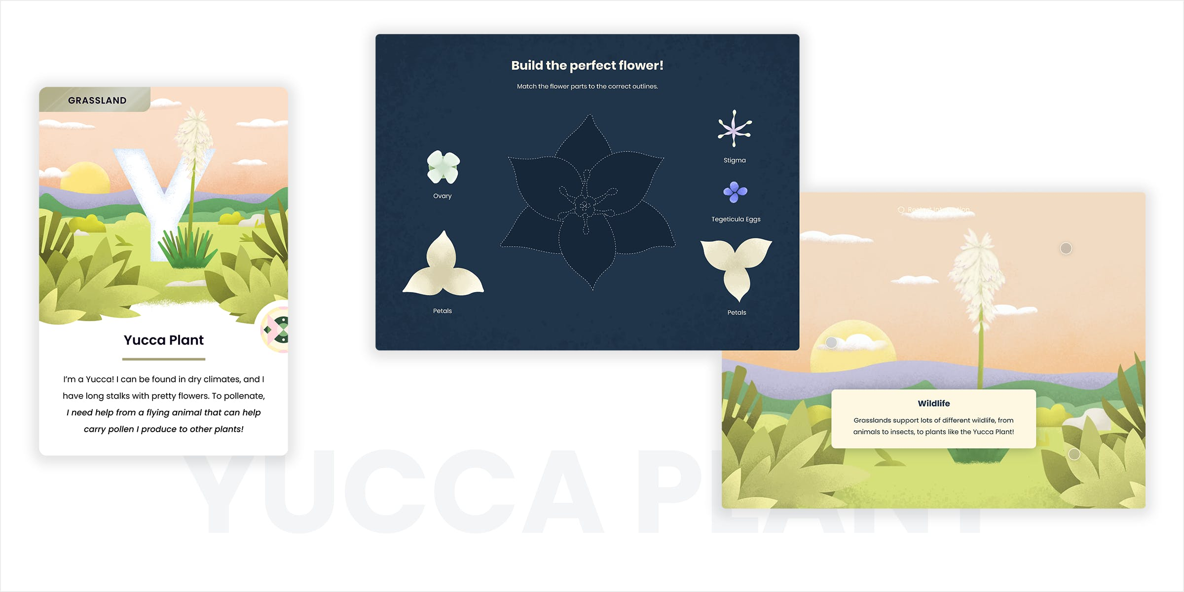 Yucca Plant card and interaction screens