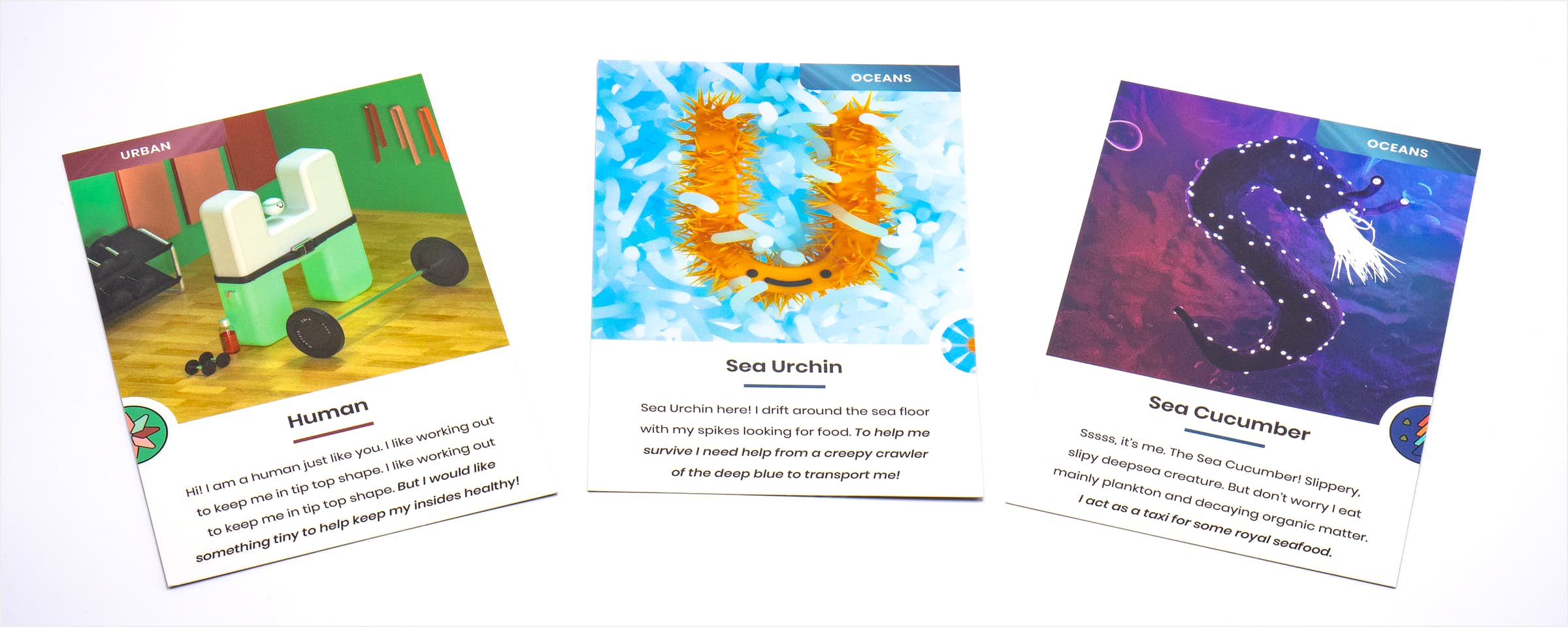 Three Cards fanned out with the letters and digital illustrations of a human, sea urchin and sea cucumber on them.